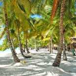 dominican_republic-isla_saona-4